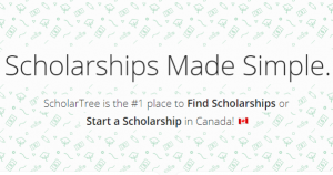 ScholarTree – helping students find scholarships
